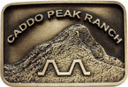 Western ranch belt buckle with mountain peak