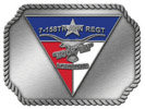 Aviation Regiment belt buckle with color accent insert